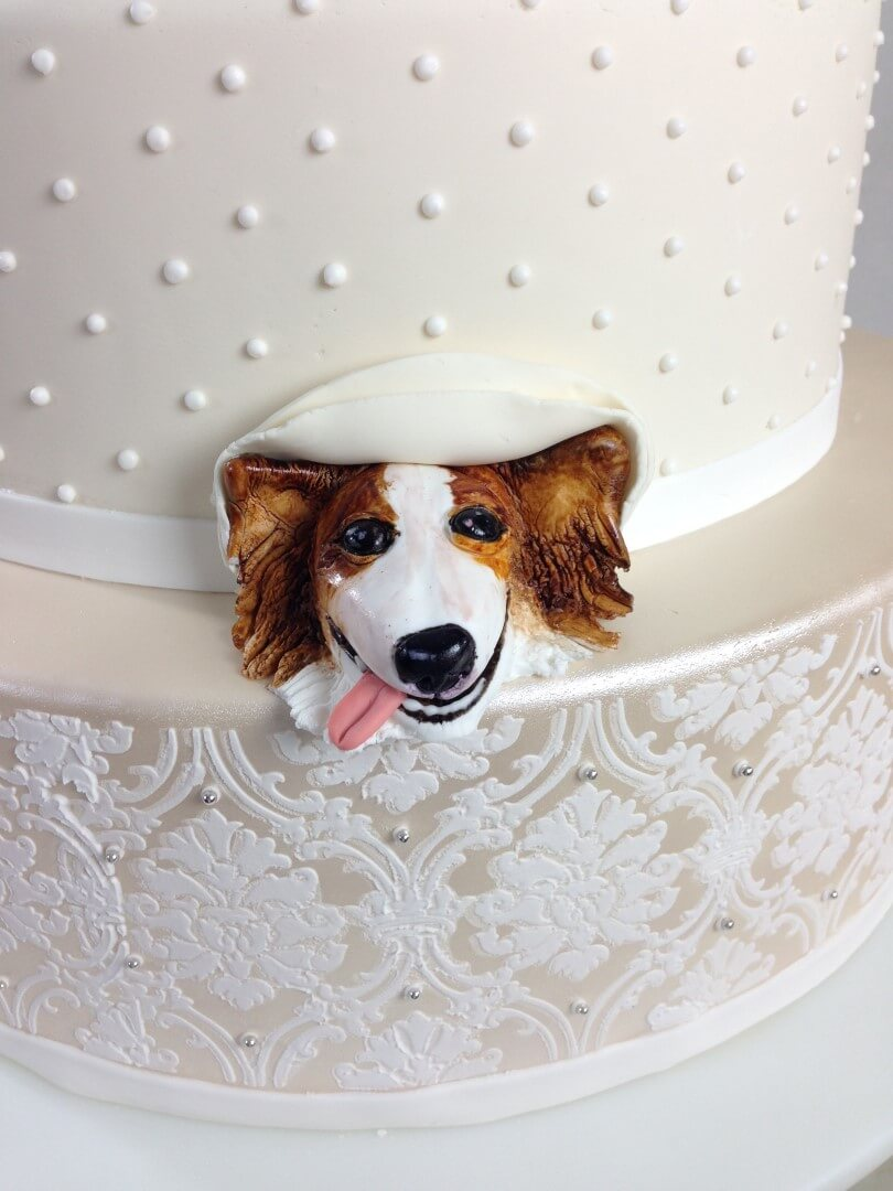 Cake Pop Out Surprise Dog